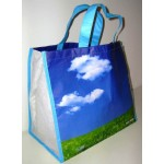 PET Woven Bags(PET-002)
