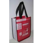 PP Non Woven Bags(PPN-025)