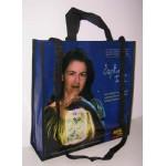 PP Non Woven Bags(PPN-026)