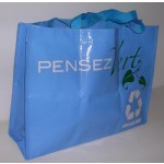 PP Woven Bags(PPW-008)