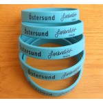 Silicone bracelet(SB-021)